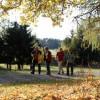 Pilz-Führerschein, Wolfsschlucht-Wanderung & Kräuterexkursion Nördlicher Schwarzwald mit Erlebniswochen im Herbst 2016