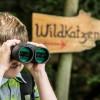 Baumtelefon, Husky-Trekking, Klanggarten & Co. Auf Outdoor-Abenteuer in Bad Herrenalb