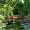 Mit Tipps vom Gartenprofi in die zweite Jahreshälfte (FOTO)