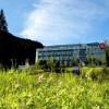 Goldener Tiroler Herbst mit HUNDert Prozent Auslauf