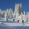 Bergeralm Châlets: Neue Adresse für Wintergenuss am Brenner