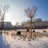 Advent in der Kartause und eine ganze Woche Silvester vor den Toren Wiens