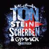 Kai und Funky von TON STEINE SCHERBEN mit Gymmick live im ART Stalker
