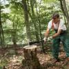 Fiskars: Holzhacken leicht gemacht – Fünf Tricks vom Förster (FOTO)