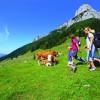 Der Bergsommer in St. Johann in Salzburg baut auf