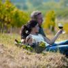 Südafrikas Weinmekka