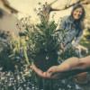 Wer jetzt pflanzen will, muss sorgfältig pflegen (FOTO)