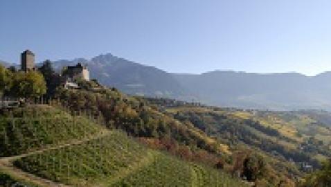 Het is goed toeven boven de daken van Merano: Deze kleine oase in de wijnbergen staat voor puur genot