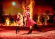 """Geschenktipp zu Weihnachten: CAVALLUNA – """"Legende der Wüste"""" / Ein märchenhaftes Abenteuer durch den Orient (FOTO)"""