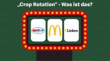 Kartoffelbauer macht Burger-Brötchen: McDonald–s Deutschland und seine Lieferanten kooperieren bei Fruchtwechsel-Projekt